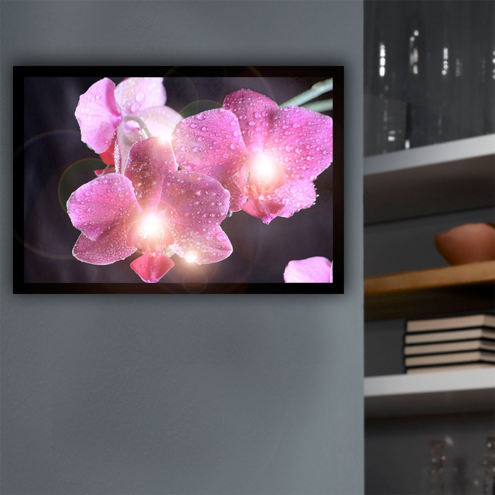 led leuchtbild deko blume blumenbild wandleuchte wandbeleuchtung bild orchidee. Black Bedroom Furniture Sets. Home Design Ideas