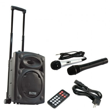 Mobile Beschallungsanlage DJ PA Funkmikrofon USB MP3 Hollywood Port-20 – Bild 1