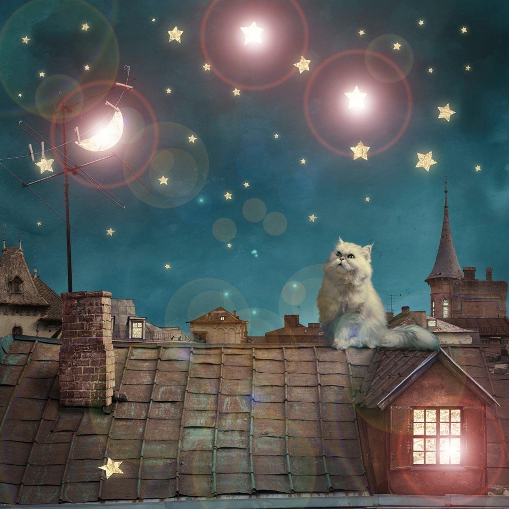 LED Leuchtbild Beleuchtung Bild Katze auf dem Dach Eglo 75038